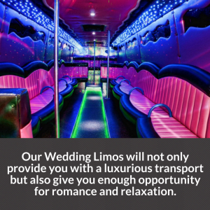 toronto wedding limo